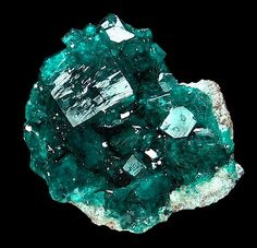 Brilliant, glassy, emerald-green crystals of Dioptase in cluster! Fine example of green brilliance. No real damage to speak of on the main crystals. From the Tsumeb Mine, Tsumen, Namibia, SW Africa. Measures 3.7 cm by 3.6 cm in size. Price $850