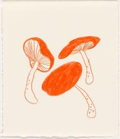 Image of Mushrooms 2 Tag Art, Art Hoe, Art Plastique, Collage Art, Cute Art, Art Inspo, Painting & Drawing, Art Reference, Art Drawings
