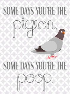 technology rocks. seriously.: Some Days You're the Pigeon...