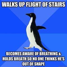 I hate that it's all the socially awkward penguin memes that resonate with me.  Uh oh.