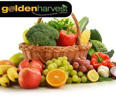 #WellnessWednesday: A diet rich in fruits and vegetables is your best bet for preventing virtually every chronic disease. Select fruits and vegetables in a variety of colours to give your body optimal function and protection. Visit your nearest #GoldenHarvest store for our wide selection of fresh produce.