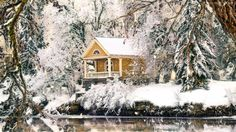 Grafika, Zima, Drzewa, Dom, Domek