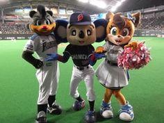 ドアラ 公式ブログ/札幌ドーム2 画像1