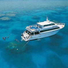 MV ScubaPro I liveaboard provides budget friendly dive safaris to the Great Barrier Reef, Australia. Short safaris departing from Cairns Australian Road Trip, Australian Beach, Visit Australia, Australia Travel, Cairns, Liveaboard Boats, Scuba Diving Australia, Working Holidays, Snorkelling
