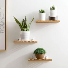 Bamboo Wall-mounted Storage Rack Living Room Wall Decoration Frame Children's Room Wall Shelf Flower Stand Home Organizer Shelf Plant Shelves, Wall Shelves, Bookshelf Wall, Display Shelves, Pallet Garden Benches, Decoration Plante, Bamboo Wall, Bamboo Shelf, Shelves In Bedroom