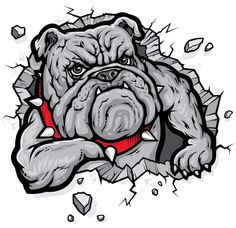 Angry Bulldog Rip Threw Rock Window Yeti Cup Camper Trailer Decal Sticker Available in 6 sizes Bulldog Cartoon, Bulldog Mascot, Cartoon Dog, Bulldog Clipart, Bulldogge Tattoo, Bulldog Drawing, Dog Illustration, Cartoon Illustrations, Dog Tattoos