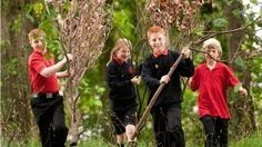 Check out how some schools are creating fantastic experiences using their campus trees: are you... pinned with Pinvolve
