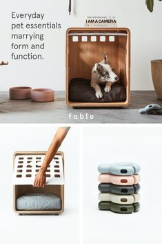Innovative pet gear - including leashes, beds, toys, and crates - that perfectly marry form and function. Pet Cafe, Dog Bedroom, I Am The Walrus, Pet Gear, Havanese, Pet Carriers, Dog Park, New Puppy, Pet Store