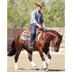 The key to success? Practice, practice, practice...work for it! You won't see 100% come out of your horse until you put 100% of your effort into its training. Pictured here is Nick Dowers. #reining #nrha #reininghorse #cowhorse #nrcha #western #aqha #quarterhorse #nickdowers