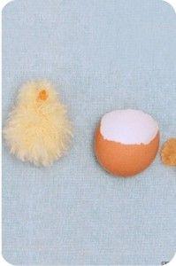 pintinho - lã - pompom - casca de ovo