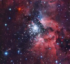 Giant HII Cloud And Its Massive Cluster (NGC Astrophotographer Robert Gendler uses advanced telescopes and his own astronomy skills to take breathtaking, mind-bogglingly beautiful photos of deep space obje Star Cloud, Star Formation, Thing 1, Interstellar, Deep Space, Constellations, Astronomy, Fine Art America, Clouds