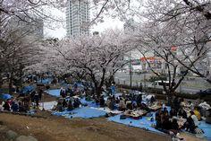 Tokyo : Top 10 des choses à faire - TripAdvisor