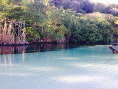 Caño frio. Samana. Dominican Republic