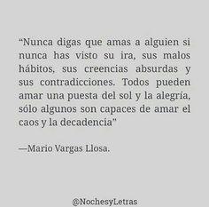 Mario Vargas Llosa                                                       …