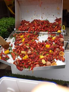 Hot crawfish Crawfish Season, Louisiana Crawfish, Kitchen Gadgets, Paella, Beverage, Dinner Ideas, Shrimp, Seafood, Paradise