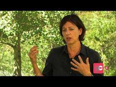 Jo Boaler: The Brain Science On Growth Mindset - YouTube