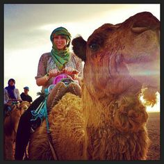 Hello Mr. Camel! #studyabroad #morocco | Flickr - Photo Sharing!