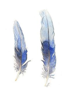 Blue Feathers - original watercolour painting of two blue Rosella tail feathers… Feather Drawing, Watercolor Feather, Feather Painting, Feather Art, Watercolor Artwork, Tribal Feather, Cuadros Diy, Painting Inspiration, Original Art