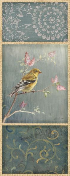 Female Yellow Goldfinch by Danhui Nai - Art Print Framed & Unframed at www.framedartbytilliams.com