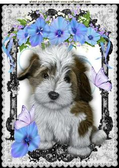 CUTE PUPPY WITH FLOWERS IN LACE FRAME A4 on Craftsuprint - Add To Basket!