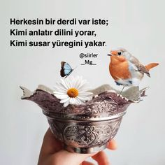 Banks Website, Best Quotes, Life Quotes, Sleeve Gastrectomy, Photo Composition, Photomontage, Going To Work, Book Art, Islam