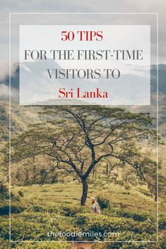 Tips for the first time travelers to Sri Lanka! Everything you should know before your trip!