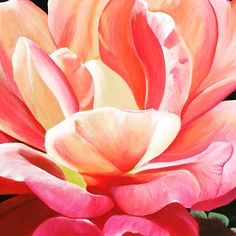 """""""Symphony""""  I was inspired by the rainbow of peachy hues and the beauty of the blossom with its petals projecting outward like rays of light from the sun."""