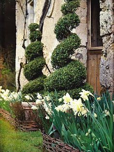from Gardens Illustrated - April 2005