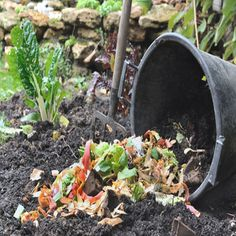 trench composting and burying your kitchen scraps during the winter. Originally published as