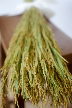 Dried Rice Bunch dry rice ornamental rice by TheBlaithinBlairShop