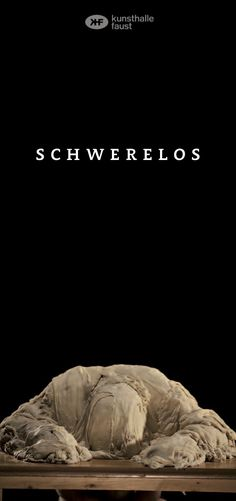 2013 : SCHWereloS, ( co-curated by Drorit Gur Arie & harro Schmidt ), Kunsthalle Faust, Hannover, Germany