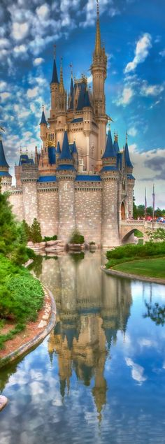 Walt Disney World | LOLO