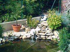 Am nagement d 39 un bassin ext rieur bassins de jardin pinterest - Agencement jardin exterieur ...