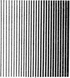 Line Shading Light to Dark Tint
