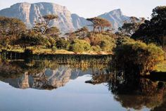 Best Golf Courses, South Africa, Mountains, World, Travel, Top, Viajes, Trips, Traveling