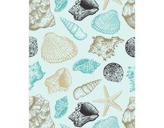 Conchas do Mar …