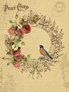 wreath and robin