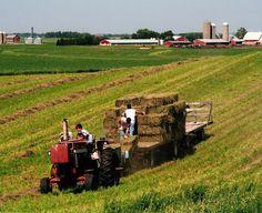 Farm Life – 2007 Capture the Heart of America Photo Contest