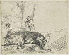 Rembrandt - Her er skraveringen over grisens store kropp gjort i lange rette linjer. Sammen med ryggens kontur som er tegnet som hårete, gir dette inntrykket av at grisen er dekt av mørk, stri bust. De mørkere skyggene er skapt av at skraveringen er gjort i flere overlappende retninger. I ansiktet og på halsen ligger det færre linjer i mange retninger, som gir inntrykk av mindre tett hårvekst.