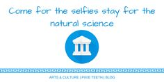 Come for the selfies stay for the natural science read it now! #blog #blogger