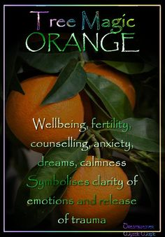 °ORANGE ~ Wellbeing, fertility, counselling, anxiety, dreams, calmness Symbolises clarity of emotions  the release of trauma