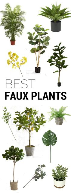 The best indoor plants - fake plants that look real!