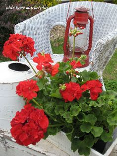 Olde Tyme Marketplace ~ I love the red geraniums with the white wicker.