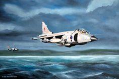British sea harrier, Falklands War