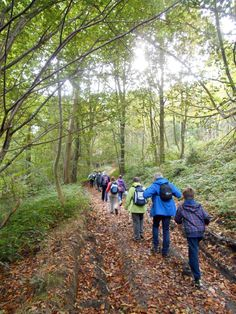 Nous vous invitons à une nouvelle randonnée pédestre guidée d'une  dizaine de kilomètres le mercredi 4 novembre 2015. Rendez-vous à 13h30. Pour attiser votre curiosité et accroître la sensation de découverte, le lieu de la randonnée ne vous sera révélé que lors de l'inscription qu'il vous faut effectuer au 02 32 70 46 32