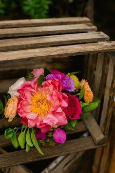 New Orleans Elopement - Sarah Becker Photography - Pop Up Weddings