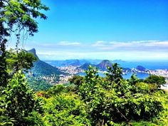 A photo of the Rio de Janeiro skyline taken from the highest point of Tijuca Forest, a national park and the world's largest urban forest.