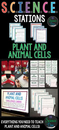 This Plant and Animal Cells S.C.I.E.N.C.E. Station activity includes activities covering the basic structures and functions of plant and animal cells.  This lab is designed to get your students engaged, collaborating, and moving in your daily lesson.