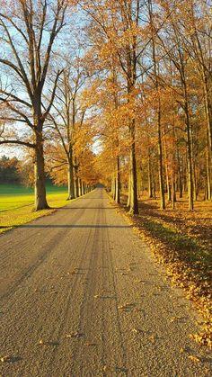 Long lone road.