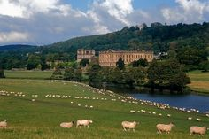 "Visiting Jane Austen's England Traveling through England to visit Jane Austen's house, the streets of Bath where her characters walked, and Chatsworth, the real-life model for Pemberley in ""Pride and Prejudice"" (Wall Street Journal)"
